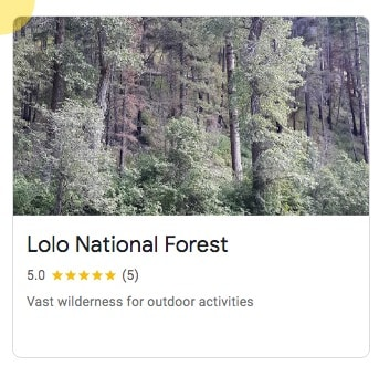 Lolo National Forest in Missoula