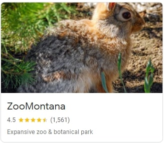 ZooMontana in Billings